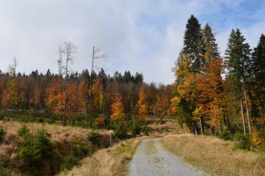 Tip na podzimní výlet – Ze Stožce do Nového Údolí