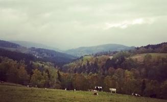 Kam vyrazit na výlet v okolí Lipna a Šumavy v nadcházející zimní sezóně