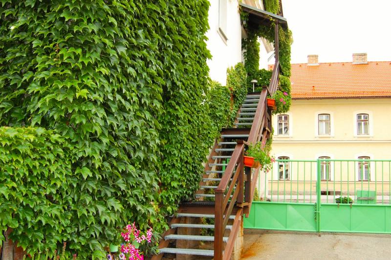 Ubytování Lipno - Zahrada penzionu
